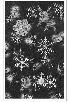 The Outside Story: Catch a falling snowflake