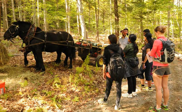 MT NPS 99th Photo credit John Gilbert Fox for Forest Festival article