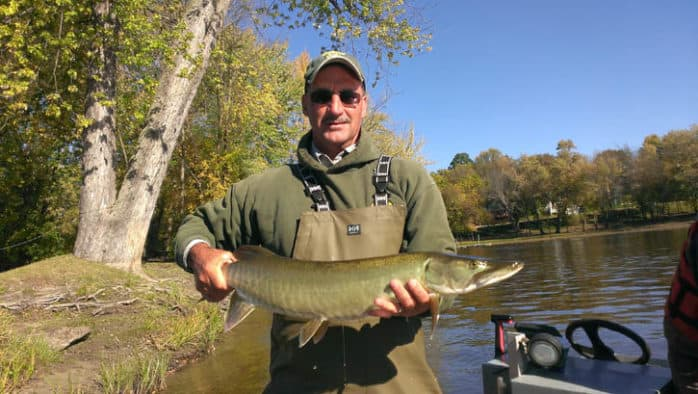 Fish & Wildlife to stock muskellunge fingerlings in Lake Champlain
