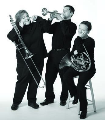 VSO musicians to perform in area schools