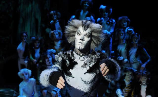 "Catch ""Cats the Musical"" in Woodstock"
