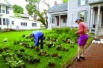 Rutland Garden Club readies for coming plant sale, May 21