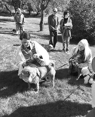 Annual animal blessing to be held at Mission Farm church, Sunday
