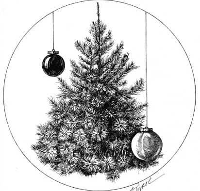 The trees of Christmas past and future