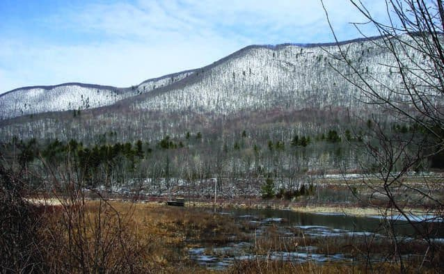 Public input sought for management goals for the Blueberry Hill WMA
