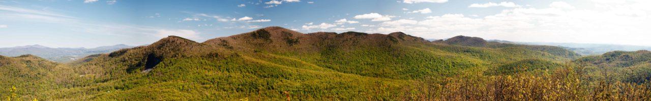 Vermont Fish & Wildlife creates new Bird's Eye WMA