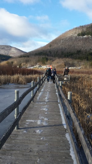 Courtesy RCAS The West Rutland Marsh is a favorite spot for the Rutland County Audubon Society to birdwatch.