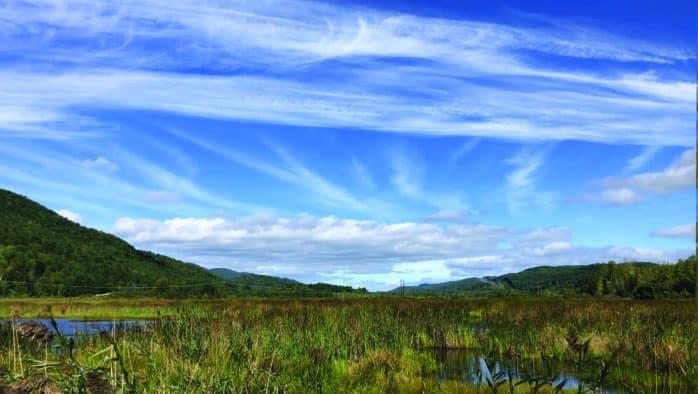 Rutland County Audubon introduces West Rutland Marsh Dream Trail