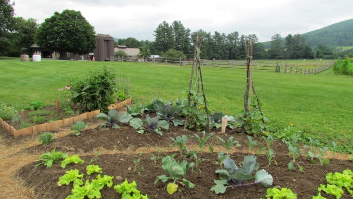 Community garden plots available in Rutland