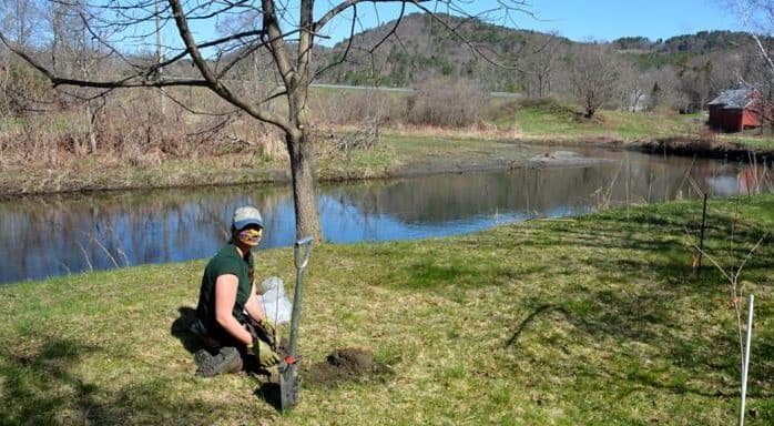 Newly planted trees help keep local rivers and businesses healthy
